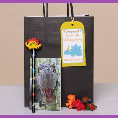 PartyBagOnline_Dinosaur_Party_Bag